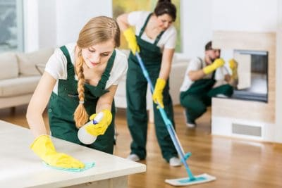 Domestic Cleaning Services - Swissmaid UK Ltd